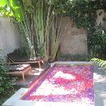 OUTSIDE POOL - ROMANTIC ROSE PETAL WELCOMING