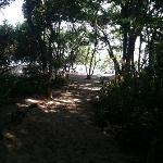 Walking path to beach