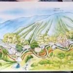 渡假村提供的合歡溪步道精美地圖 the map provided by hotel