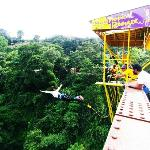 tropical Bungee - Bungee Jumping