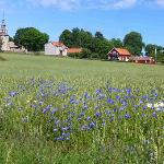 Luckerstad Guesthouse - Surrounding scenery