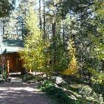 Bodhi's cabin at Spirit Falls entry