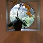 window above tub