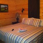 The bedroom of the Rustic Cabin