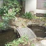 Photo of Business Ryokan Maizuru