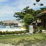 Anemone Resort and Tours, Cebu Foto