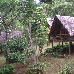 Cabins of Karama Lodge