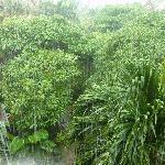 auch bei Regen sehr schön