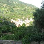 A view of Monterosso's hill side