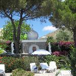 sunbed gardens