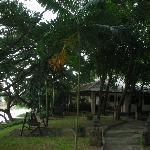 Baannamping Riverside Village grounds