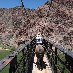 Going across the bridge to Phantom Ranch