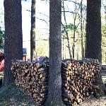 Wood for the firepit