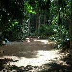 Entering 'The Garden of Eden'