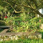 Jardim da Pousada - Um sossego