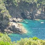 sentiero nel Parco di Portofino