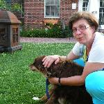 Pet therapy with Sandy and Bear
