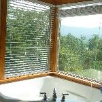 View from bathroom jacuzzi