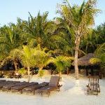 La zona de cocoteros en la playa del hotel, la palapa al fondo es el hotel.