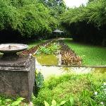 The famous Brief Garden - a short drive from Dalmanuta