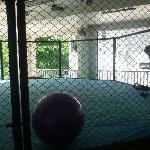 MMA Training Cage