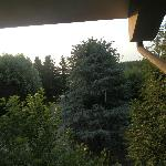 View from our bedroom