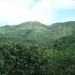 Valley de Mai