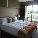 Amazing Bed!!!