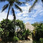 Alrededores de Boca Sombrero, vista de los jardínes