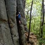 Millie Climbing
