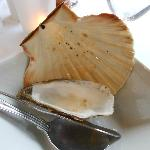 Oyster & clam shell still no langoustine