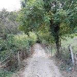 hiking trails near Penas Arriba