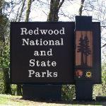 Next door to Redwood National Parks