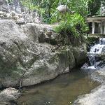 Secret Buddha Garden Foto
