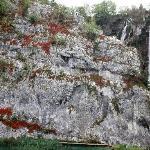 Plitvice Lakes by Dr.sc Srecko Bozicevic