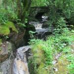 Hafod - Gorge Trail
