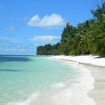spiaggia a nostra disposizione