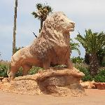 A statue of a male lion