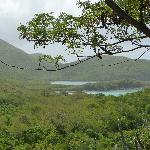 Little Lameshur bay - view from the trail to Reef Bay