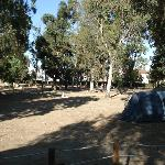 Tents and caravans area