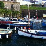 Coverack harbour - only five minutes walk from hostel