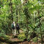 On trail in Quebrada-Gonzalez sector