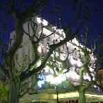 From La Croisette