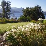 jardin ,lago Nahuel Huapi y cordillera
