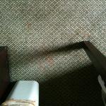 Foto de Red Lion Inn & Suites Hershey
