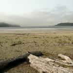 The beach on a foggy day