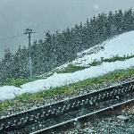 Cog wheel railway track for Jungfraubahn