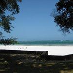 Diani Beachalets Foto