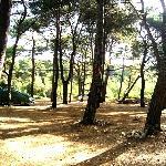 camp Čikat