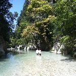 Acheron Springs